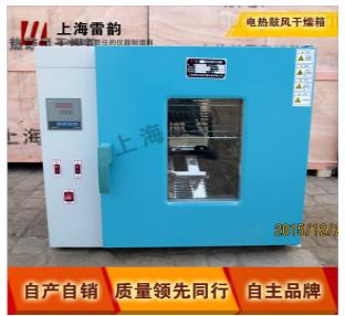 DZF-6053型真空干燥箱/真空干燥箱/智能干燥箱