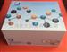 猪活化蛋白酶联免疫分析试剂盒多少钱,品牌,上海那家公司好