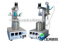 WZB--北京实验室高温光化学微型小型釜