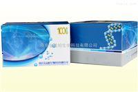 小鼠亮氨酸脑啡肽ELISA试剂盒